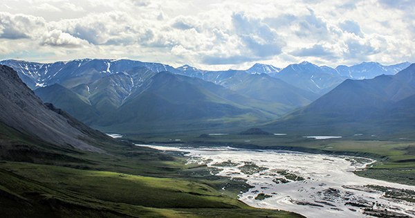 Help Protect the Arctic Wildlife Refuge Before It's Too Late!